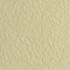 Бумага для пастели цв.04 50х65 Tiziano 160 г/м2 /сахара