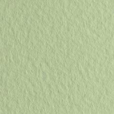 Бумага для пастели цв.11 50х65 Tiziano 160 г/м2 /салатовый теплый