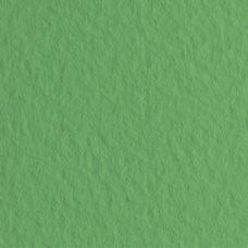 Бумага для пастели цв.12 50х65 Tiziano 160 г/м2 /зеленый