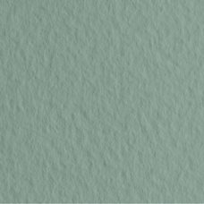Бумага для пастели цв.13 50х65 Tiziano 160 г/м2 /сальвия