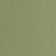 Бумага для пастели цв.14 50х65 Tiziano 160 г/м2 /оливковый
